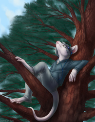Commission - Music in the Forest