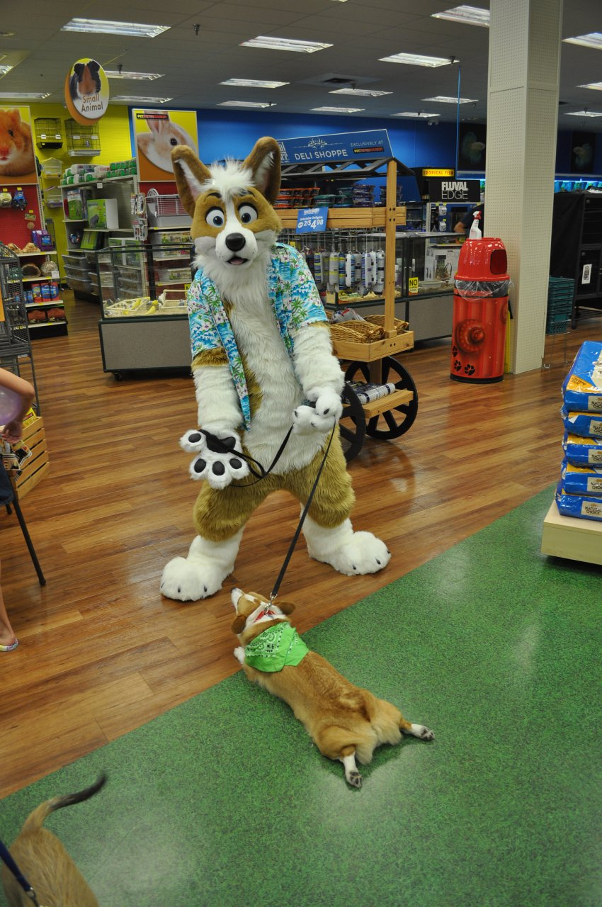 Pet Supermarket Costume Contest!