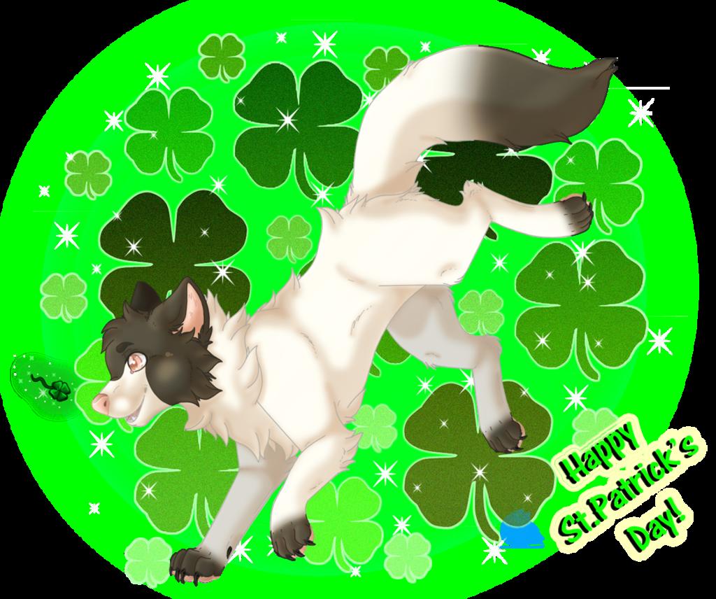 Happy St Patricks Day everyone