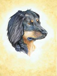 Emmi Portrait