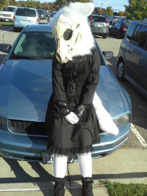 Ghost - Mustang