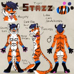 Stazz Tiger
