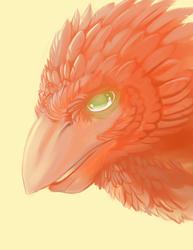 Speedpaint: Bird thing