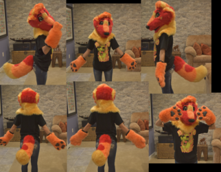 Firecracker Partial Turnaround