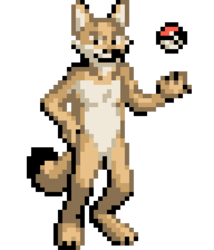 Swift Fox Binary would like to battle!