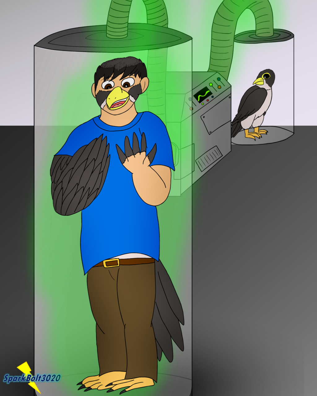(COM) Falcon Experiment - Falcon TF (Page 1/2)