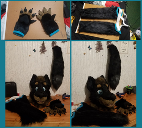 Autumn's Completed Partial