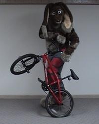 Skuff and his bike