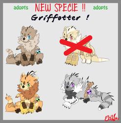 NEW SPECIE - Griffotter ADOPTS