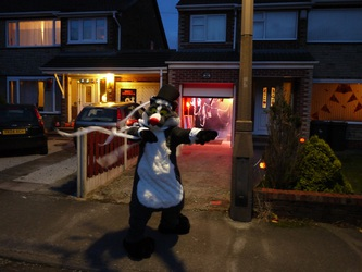 Brok The Badger of Confuzzled on Halloween