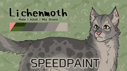 SPEEDPAINT - Lichenmoth