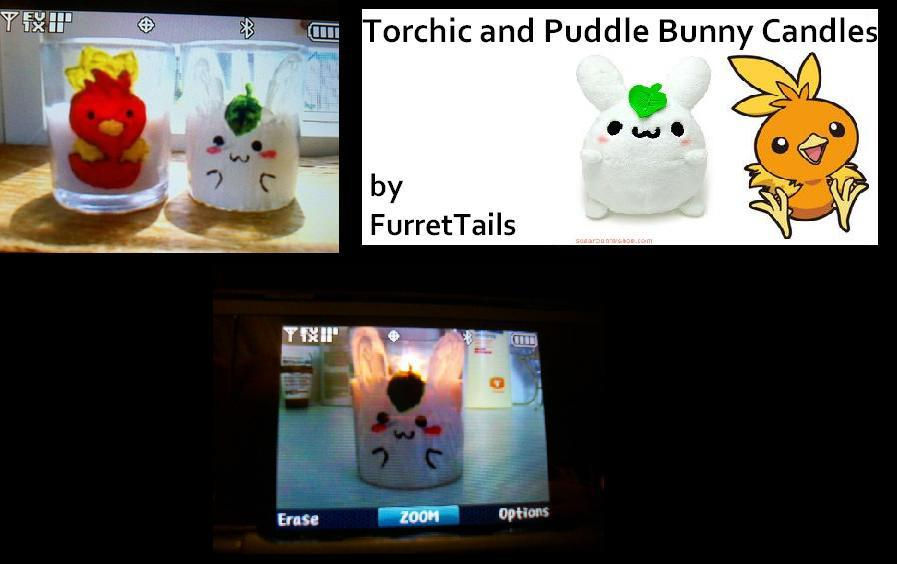 Torchic and Puddle Bunny Candle