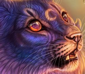 Luna Somnium Close-up