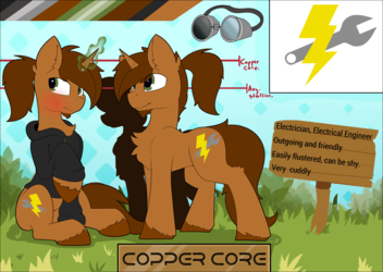 Commission Ref sheet for copper core!