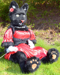 Cat puppet in a red dress