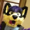 avatar of EchoHusky