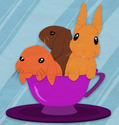 Tea Cup Bunnies