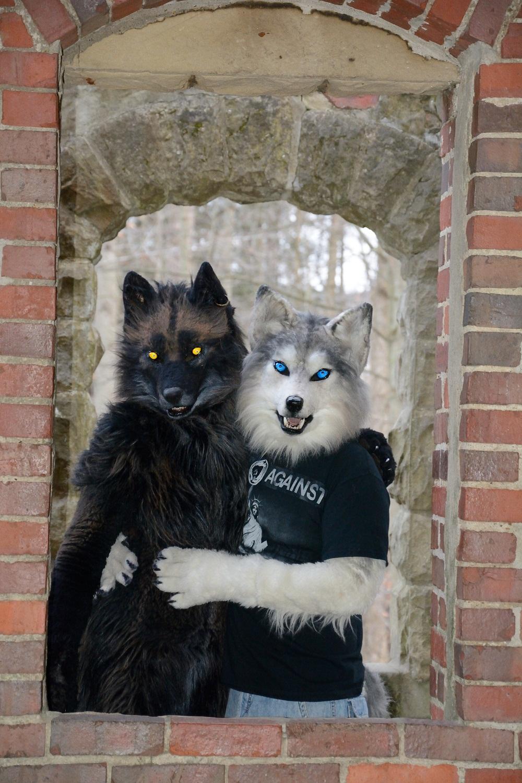 Most recent image: Couples Portrait