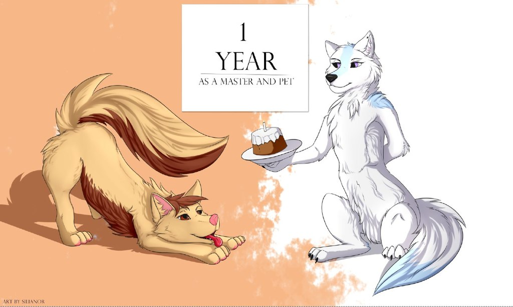 1 Year a Master (by Silianor)