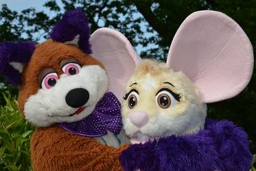 It's That Fox & Mouse Again