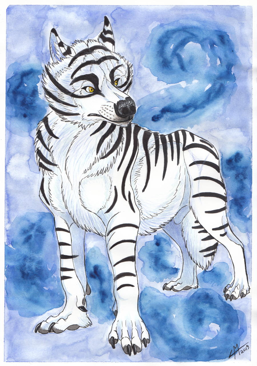 Most recent image: White Tiger