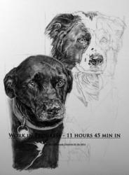 Joe and Sealie - WIP 5
