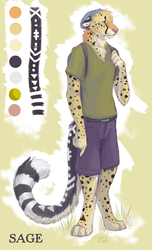 Sage Cheetah