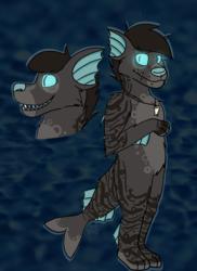 Deep Sea Doge