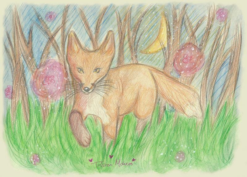 Little Wild Fox