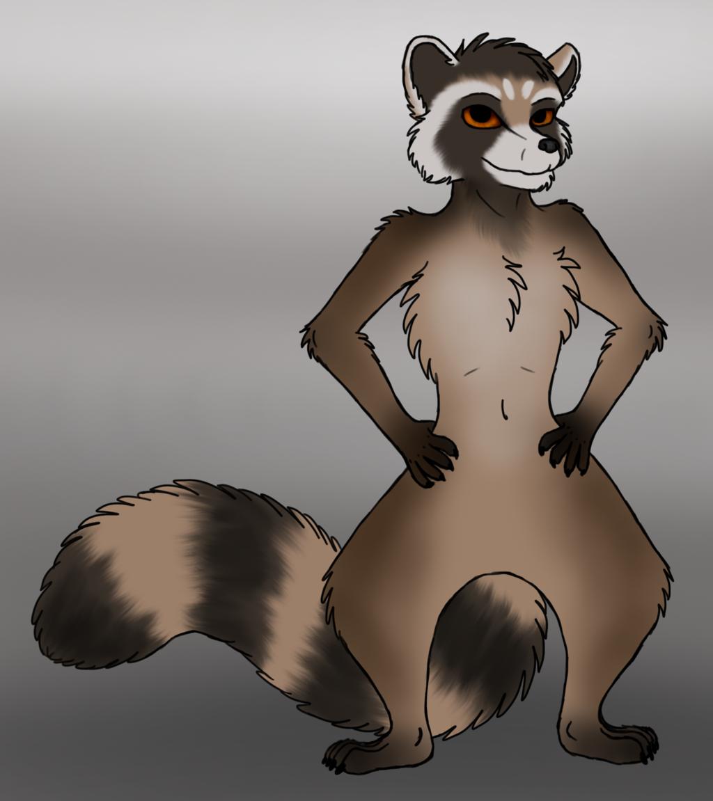 Tony the Raccoon