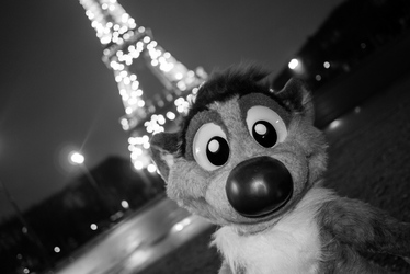 [Plush] Visiting Paris Eiffel Tower