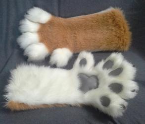 Chelan's Handpaws