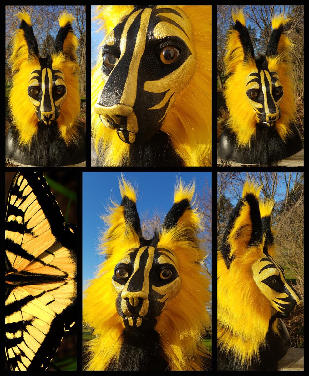 Instinct Butterfly Cat!