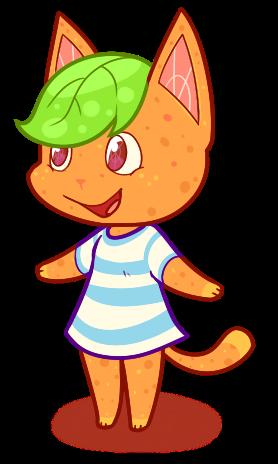 citrus cat