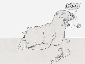 Feed the sea lion