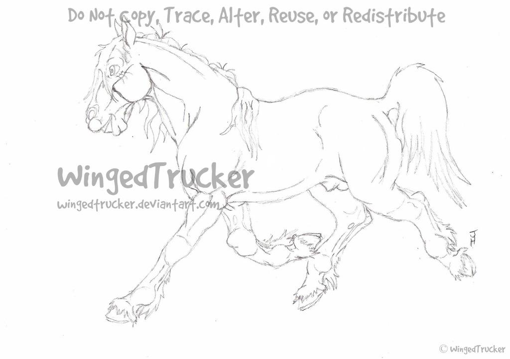 Trotting Horse Sketch