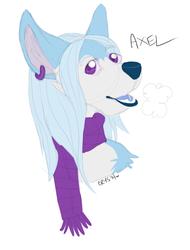AxelHead