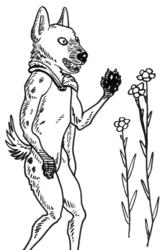 Hyena Herbalist