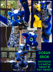DOREY FURSUIT! By Selkie Suits