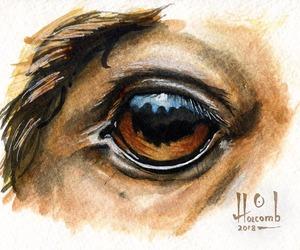 Watercolor Horse Eye