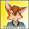 avatar of yellowfur