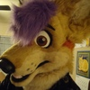 avatar of sneakcoyote