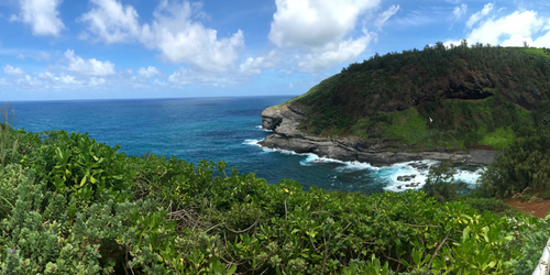 Kilauea Point panorama 2/2