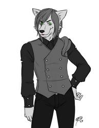 Hiro by Mookyvet and Furry_Raving