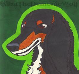 Bunch of Doggos - Saluki