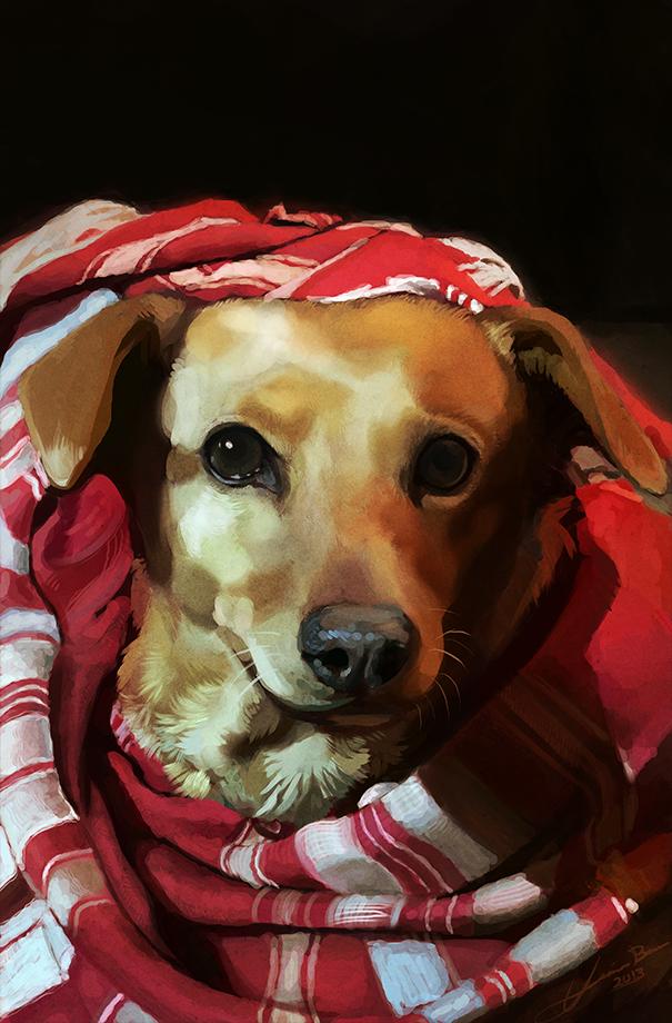 Most recent image: Kate Pet Portrait