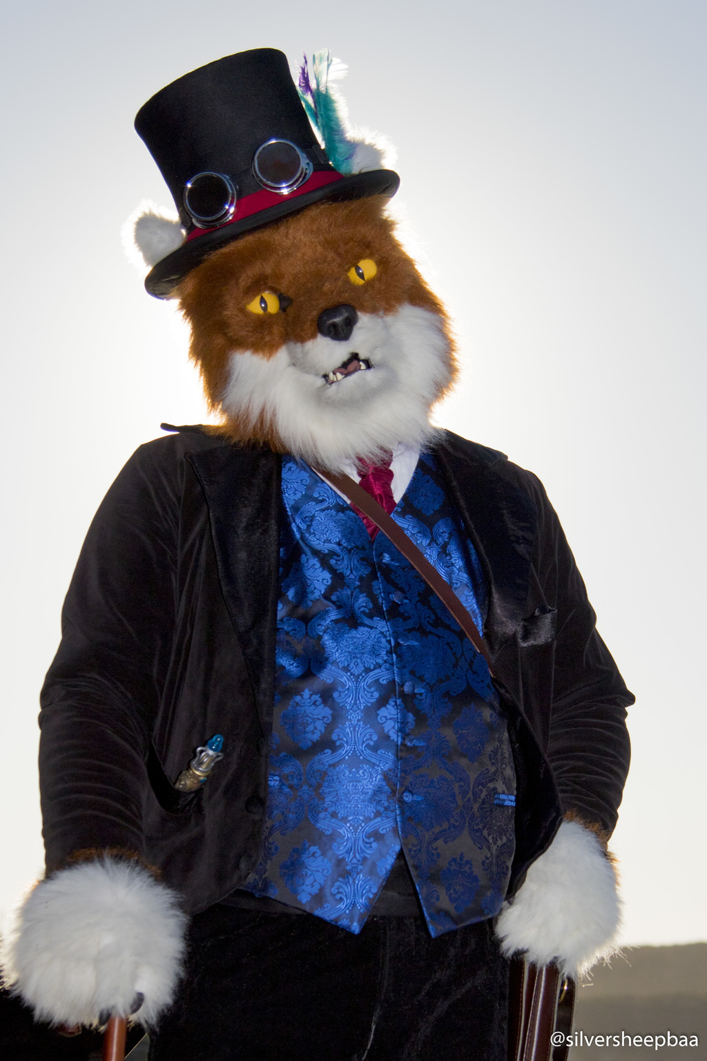 Q Station 2017: Golden Fox
