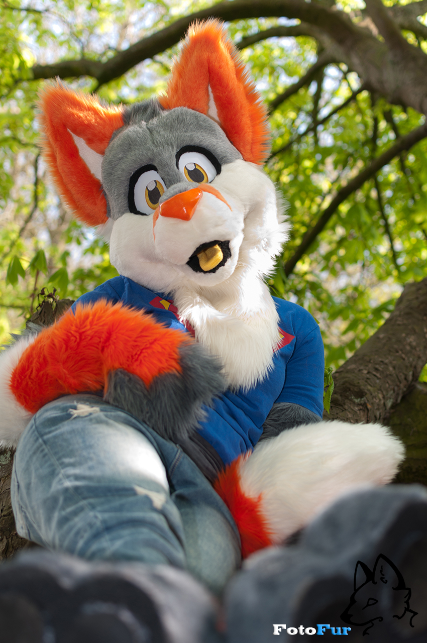 Chilling in a Tree