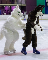 Furries On Ice: Diego and Cookie