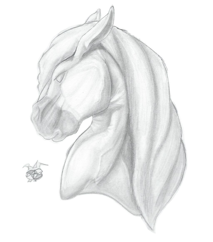 Most recent image: Horse Head